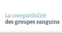 La compatibilite des groupes sanguins